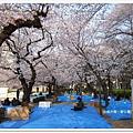 韌公園-另一藍地鋪