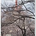 韌公園-科學技術館紅塔