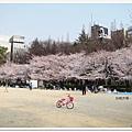 韌公園-粉紅腳踏車