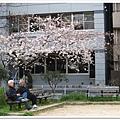 韌公園-悠閒老人