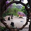 泉南藤花-庭院藤椅