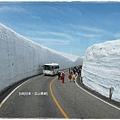 立山黑部-高原巴雪之谷雪壁