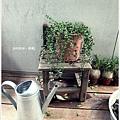田樂-2F戶外植物.JPG
