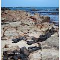 奎壁山-赤嶼島石.JPG