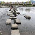 鴨川-直式跳石全景.JPG