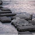 鴨川-黃昏烏龜跳石.JPG