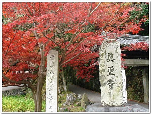 宇治-興聖寺.JPG
