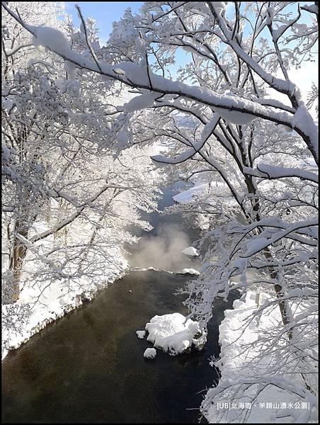羊蹄山-池上樹枝.JPG
