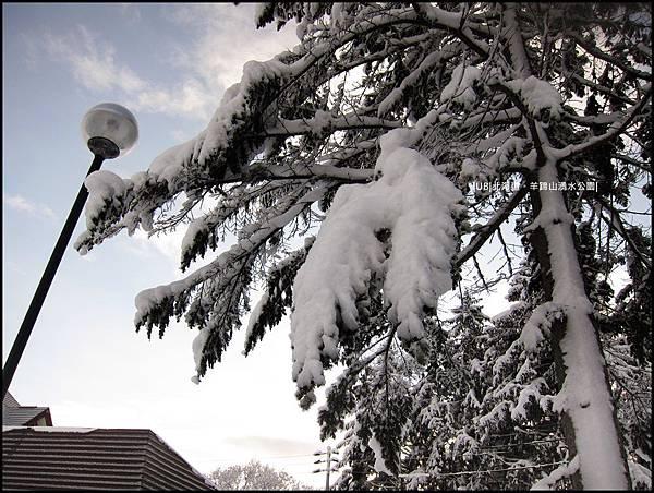 羊蹄山-垂雪.JPG