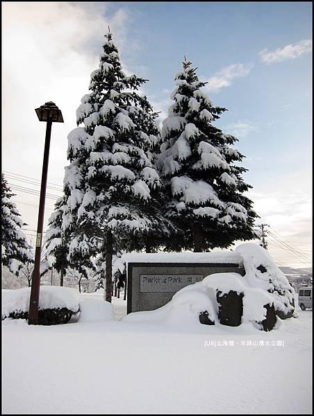 羊蹄山-聖誕樹.JPG