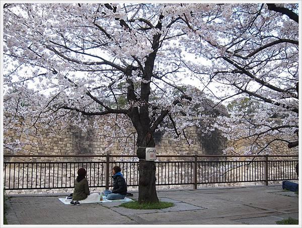 大阪城-櫻花樹下兩人.JPG