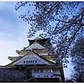 大阪城-櫻花環繞.JPG