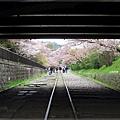 疏水道-蹴上鐵道.JPG