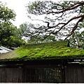南禪寺-青苔屋頂.JPG