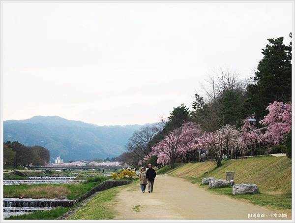 半木之道-鴨川邊散步.JPG