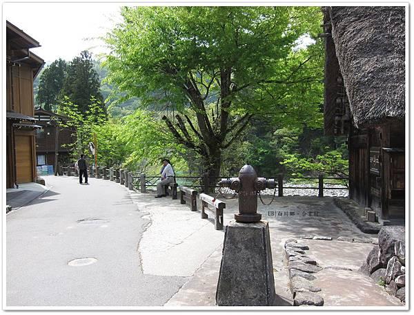 白川鄉合掌村-街道.JPG