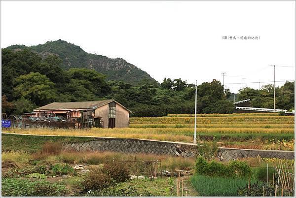 豐島-遙遠的記憶-5.JPG