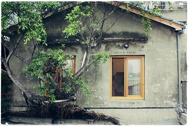 綠光計劃-2樓-牆外樹-2.JPG