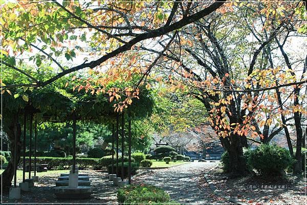 彥根城-玄宮園-金龜兒童公園-1.JPG