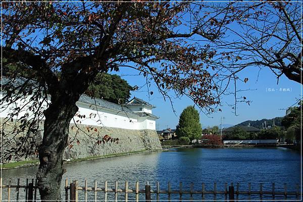 彥根城-護城河.JPG