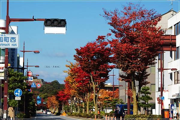 彥根站前街道.JPG
