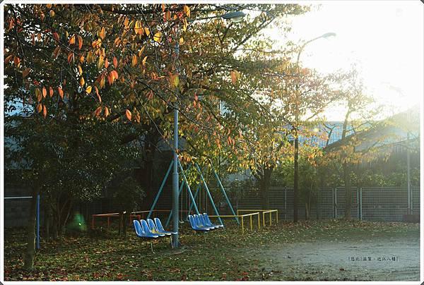 近江八幡-公園.JPG