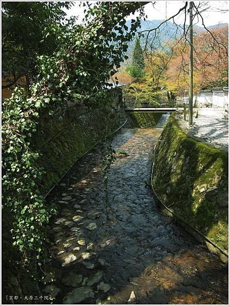三千院-律川.JPG
