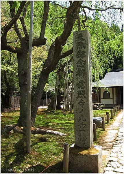 常照皇寺-九重櫻碑.JPG