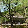常照皇寺-方丈前-1.JPG