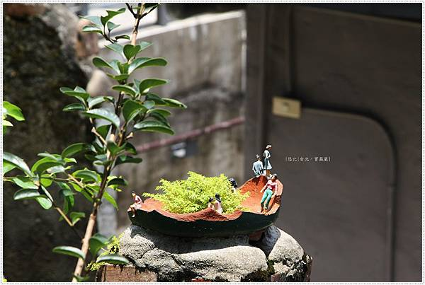 寶藏巖-小盆栽.JPG