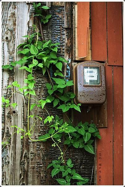 犬島-民宅-3.JPG