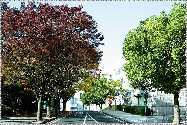 後樂園-街道.JPG