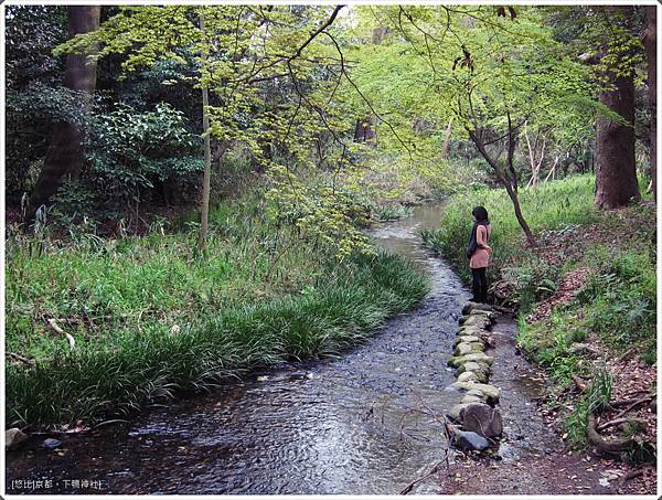 下鴨神社-糾之森-1.JPG