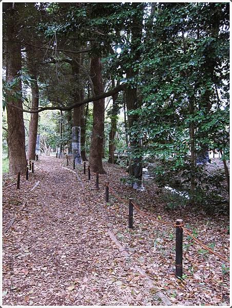 下鴨神社-糾之森-3.JPG
