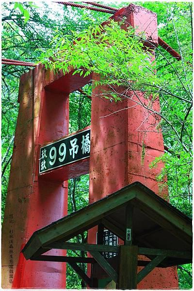杉林溪-吊橋-1.JPG