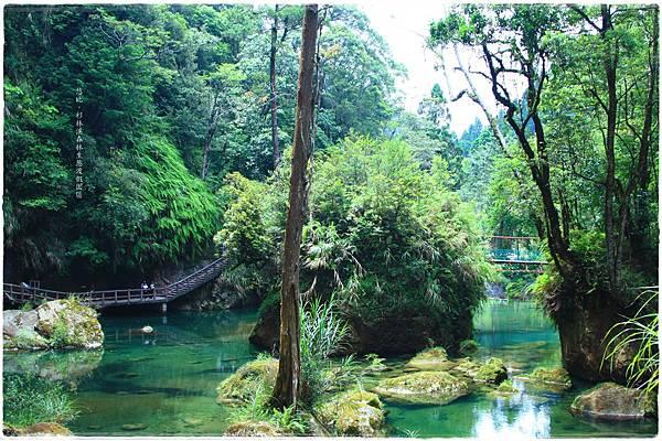 杉林溪-碧綠池水-2.JPG