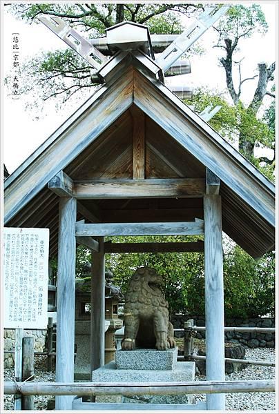 天橋立-伯犬.JPG