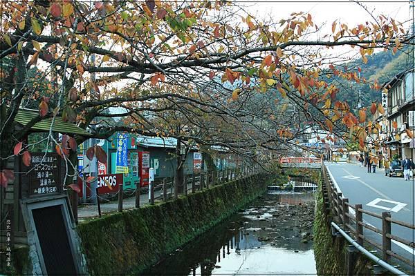 城崎溫泉-大谿川-2.jpg