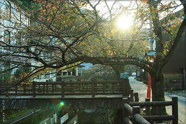 城崎溫泉-木屋町通-8.jpg
