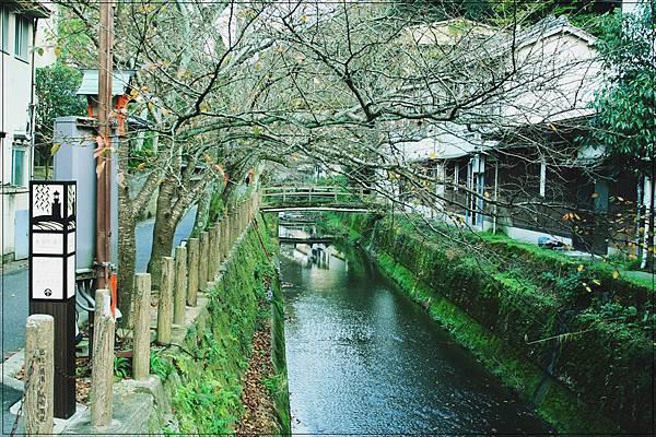 城崎溫泉-木屋町通-10.jpg