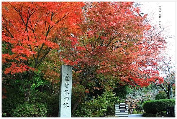京都-一乘寺-曼殊院-2.jpg