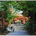 京都-一乘寺-曼殊院-3.jpg