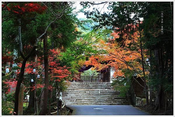 京都-一乘寺-曼殊院-5.jpg