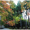 京都-一乘寺-曼殊院-8.jpg