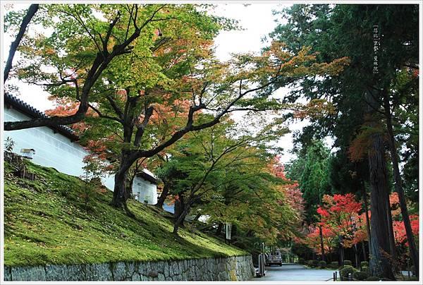 京都-一乘寺-曼殊院-10.jpg