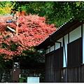 京都-一乘寺-曼殊院-11.jpg