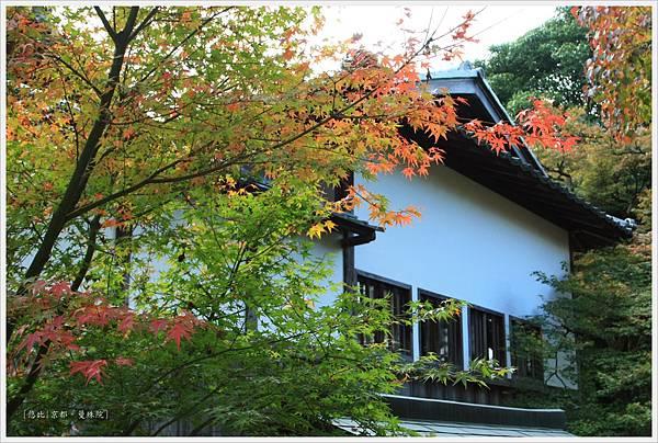 京都-一乘寺-曼殊院-12.jpg