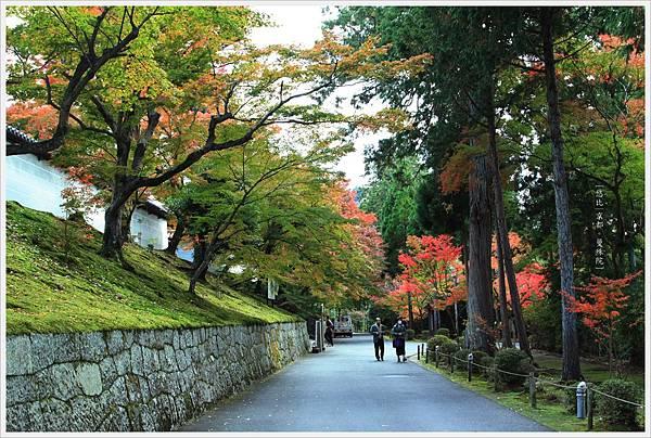 京都-一乘寺-曼殊院-14.jpg