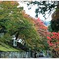 京都-一乘寺-曼殊院-15.jpg