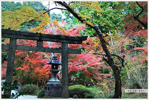 京都-一乘寺-曼殊院天滿宮-1.jpg